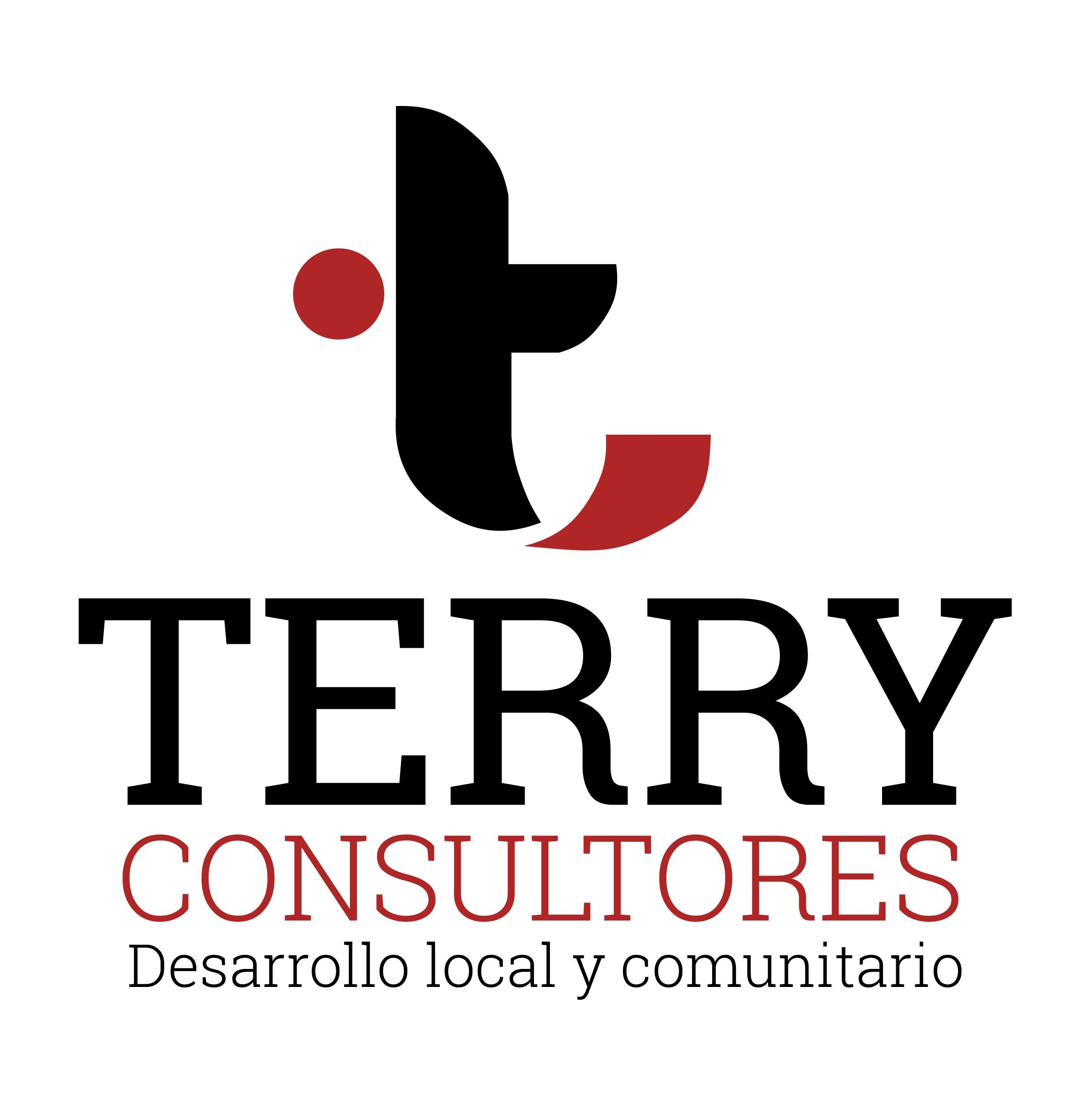 Terryconsultores